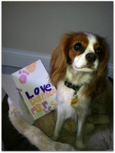 Dog's letter